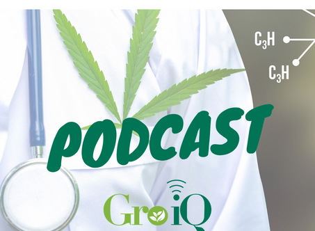 "Gro-Doctors Podcast: ""Stressed About Yield?"""