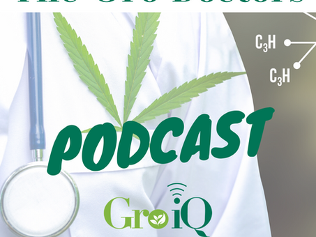 """Gro-Doctors Podcast: """"Stressed About Yield?"""""""