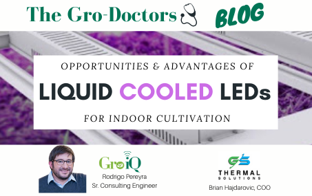 Opportunities and advantages of liquid cooled LEDs in indoor cultivation