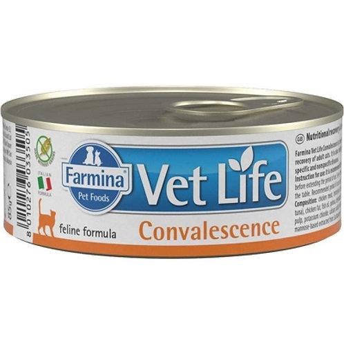 Farmina Vet Life Convalescence консервы для кошек  в период выздоровления
