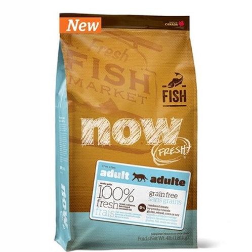 NOW FRESH adult fish cat НАУ ФРЕШ беззерновой для взрослых кошек с форелью и лос