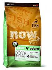 now fresh small fish.jpg