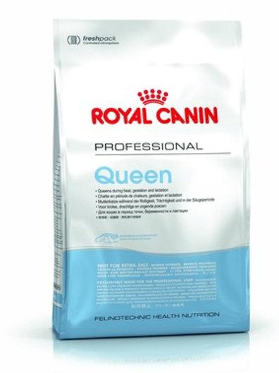 Royal Canin professional queen для беременных и лактирующих кошек