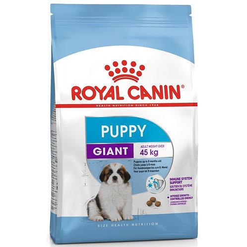 Корм Royal Canin  Giant Puppy для щенков гигантских пород 2-8 мес.