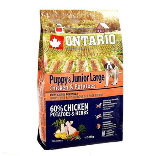 Ontario для щенков крупных пород с курицей и картофелем