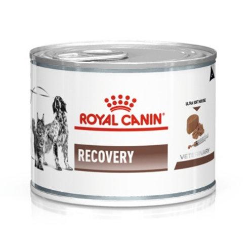 Royal Canin recovery паштет для животных при анорексии и в период восстановления