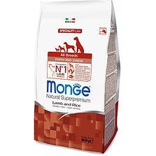 Monge Puppy & Junior Speciality Lamb.jpg