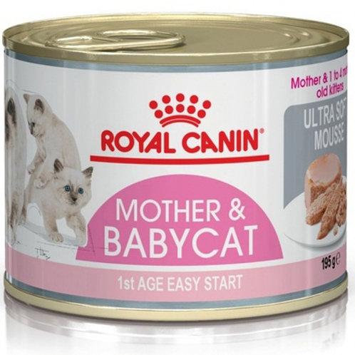 Royal Canin мусс для котят до 4 мес.