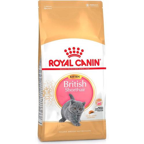 Royal Canin Kitten British Shorthair Роял Канин Сухой корм для британских котят