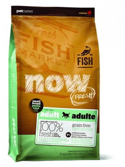 NOW FRESH mini fish dog НАУ ФРЕШ беззерновой для взрослых собак малых пород с фо