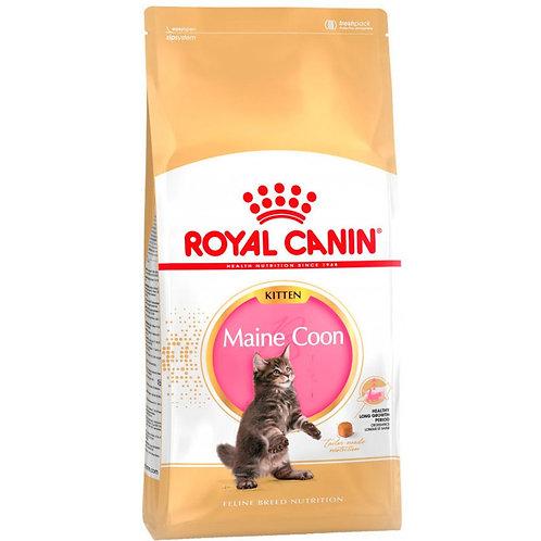 Royal Canin Kitten Maine Coon Роял Канин Сухой корм для котят породы Мэйн кун
