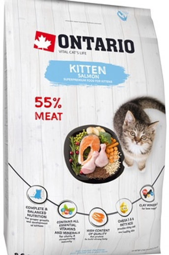 Ontario для котят, с лососем