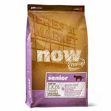 now fresh senior.jpg