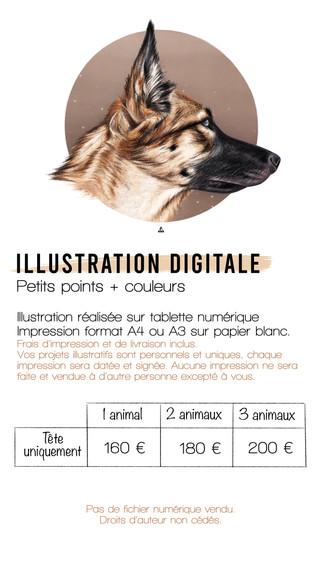 Illustration Digitale Dot et Couleurs