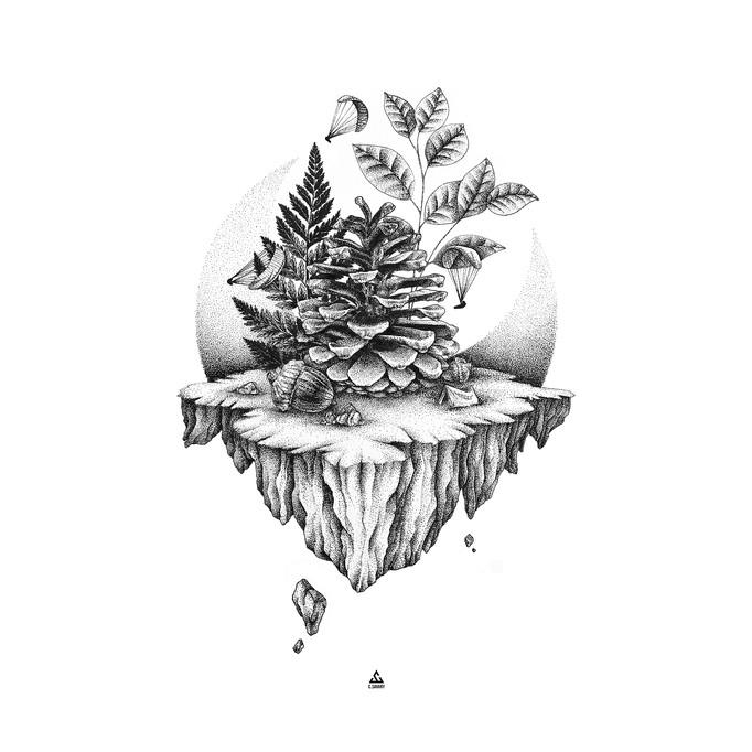 pine_low_01.jpg