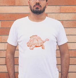 Big Orange Tortoise