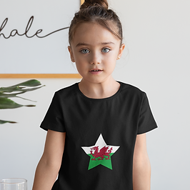 Wales Childrens T-Shirt