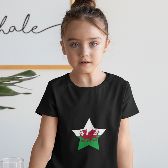 Wales Childrens T-Shirt