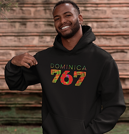 Dominica 767 Mens Pullover Hoodie