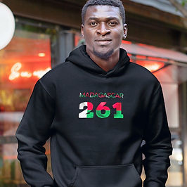 Madagascar 261 Men's Pullover Hoodie