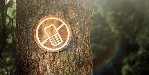no-smartphone.jpg
