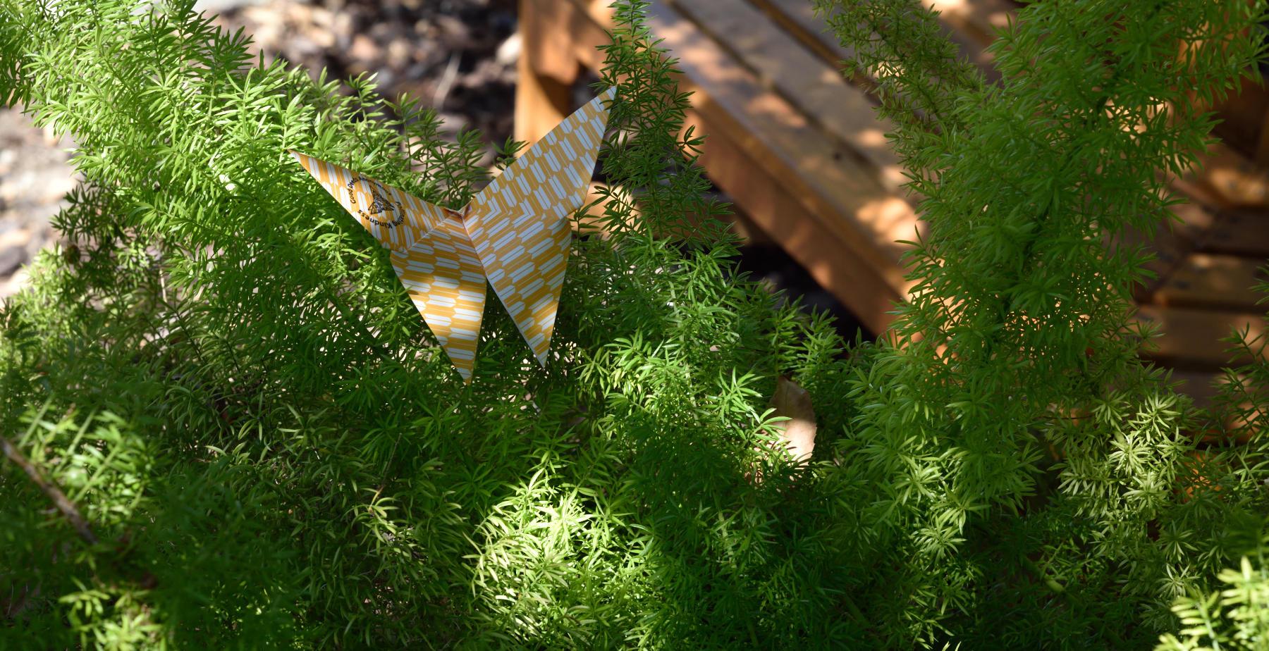 pollianting-kindness-yellowgreen-sm.jpg