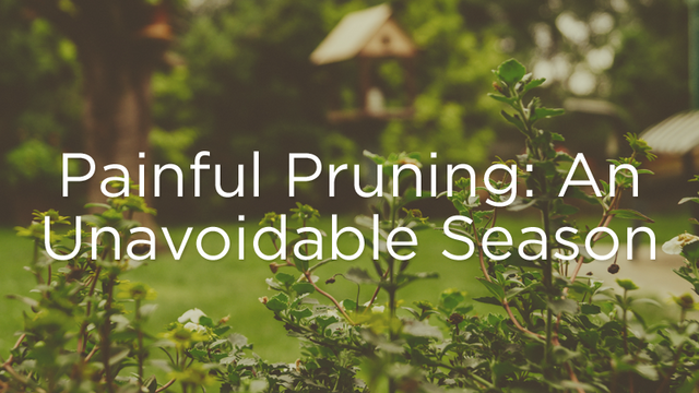 God's Work of Pruning