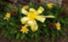 regular yellow blanket.jpg