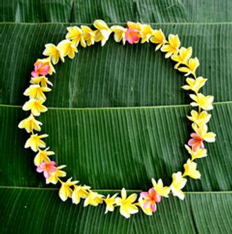 ハワイアンカルチャー学べる.jpg