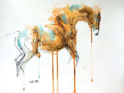Equine Nude 94t