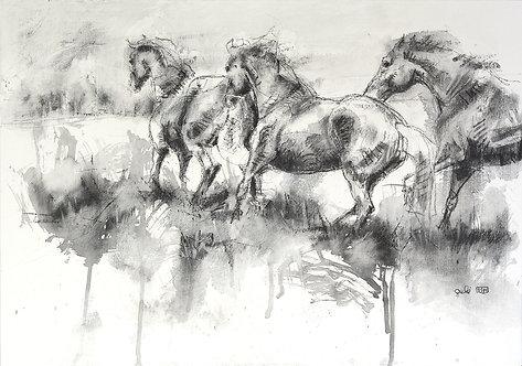 Equine Life 7t
