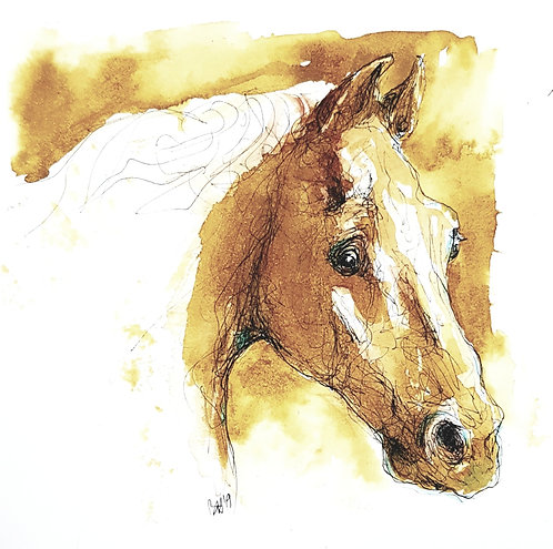 Whistlejacket X portrait