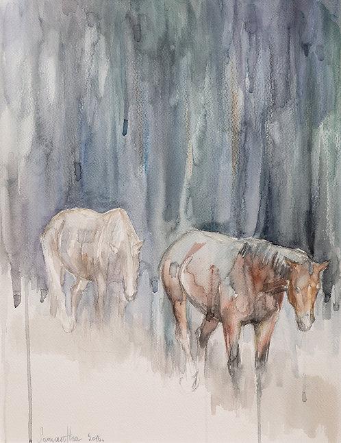 Rainy Horses