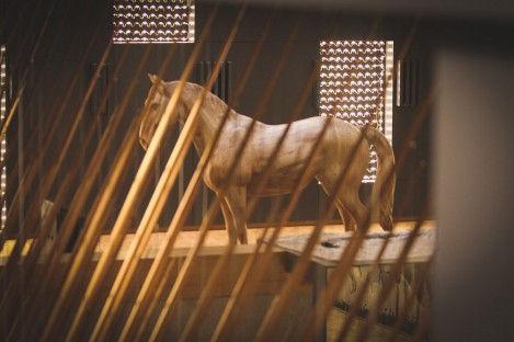 Wooden horse.jpeg