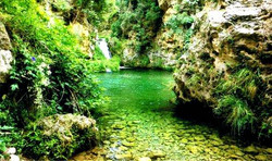 La_Senia_Tarragona6