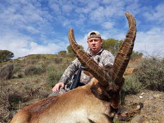 Ronda Ibex hunting