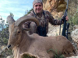 Barbary sheep hunting