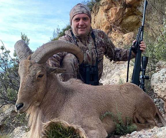 Barbary sheep hunting