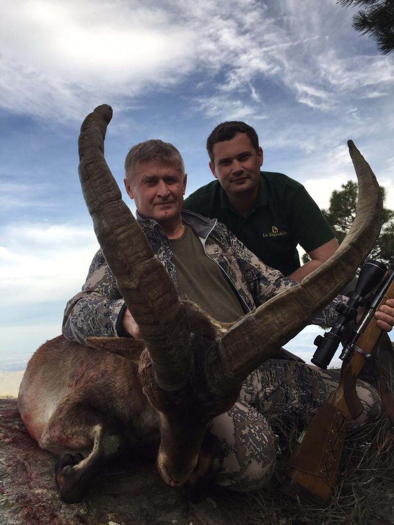 lynx safariRonda ibex Hunting Spain