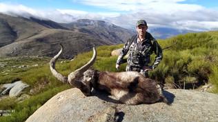 Охота в Испании Козерог гредос Lynx Tours