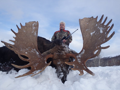 Moose Hunting in KAMCHATKA