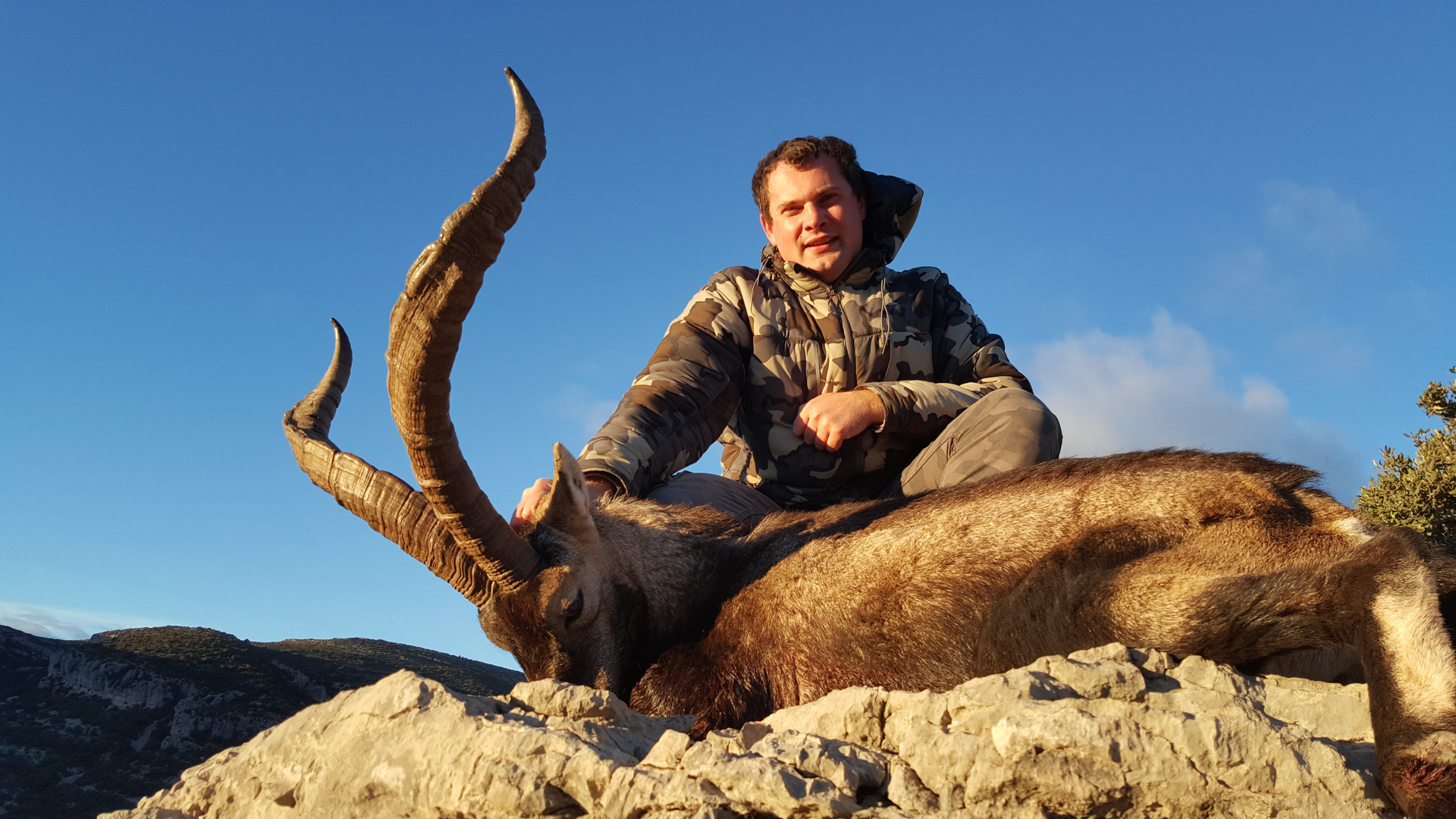best-ibex-hunting-gredos-spain