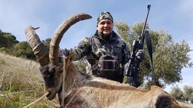 Охота на козерога Сиерра Невада в Испании с Lynx Tours 1