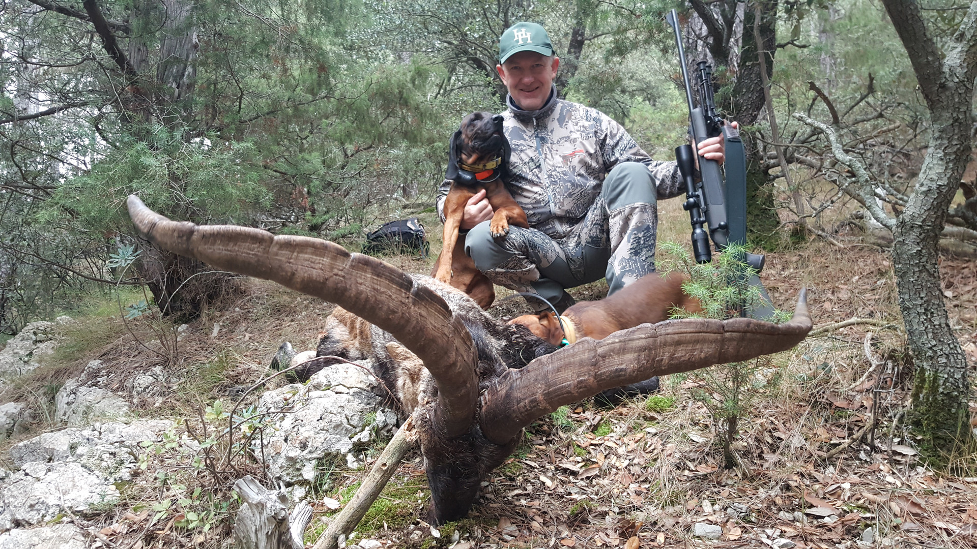 ibex-spain-beceite-hunt-lynx-travel