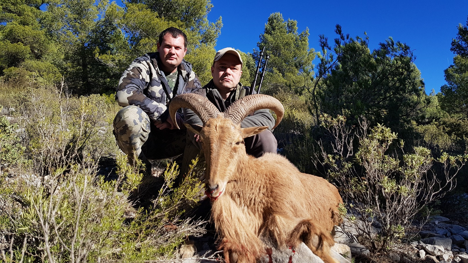 Охота в Испании 21