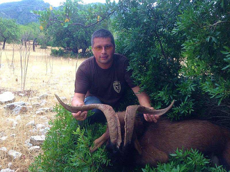 Охота в Испании на Балеарского козла Майоркого козла с Lynx Tours 15