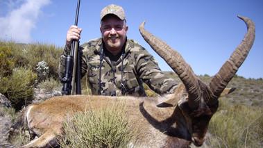 sierra nevada hunting ibex lynx tours