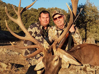 Iberian Red Deer hunting