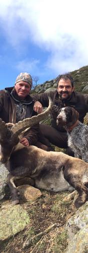 gredos-spain-ibex-huning5