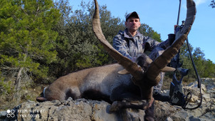 Охота на Бисайского козерога в Испании с Lynx Tours 3